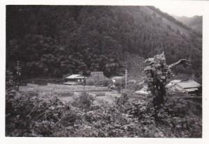 西の山側から芦田邸を望む(撮影時期不明)
