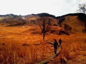 山焼き直前の草原