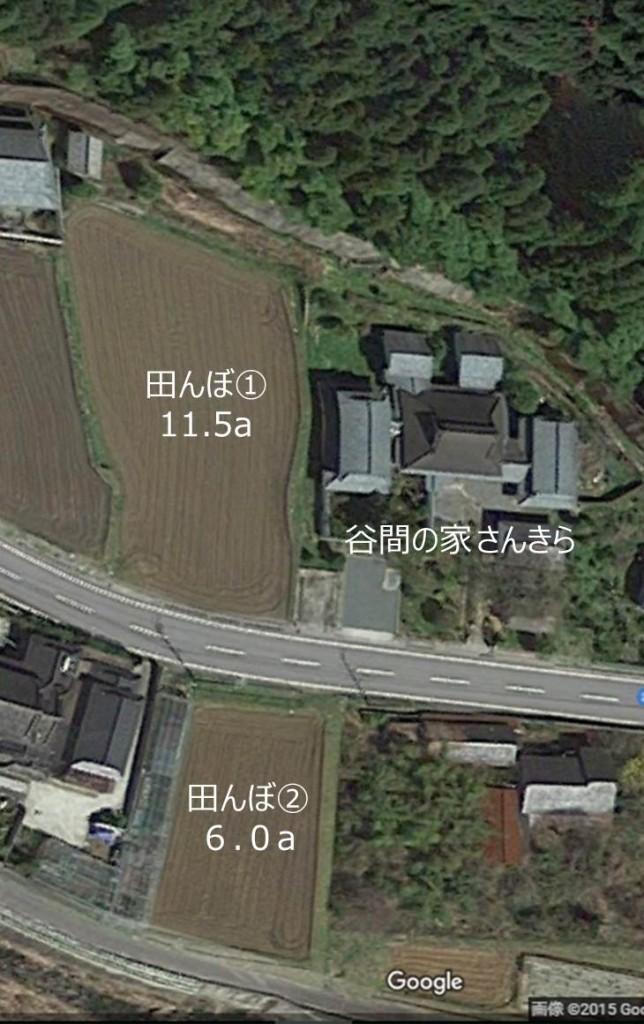google earth(田んぼ説明)